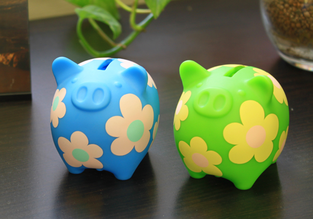 Coink flower dreams inc - Coink piggy bank ...